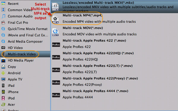 Output Multi-track MP4 format