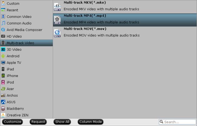 multi-track-mp4