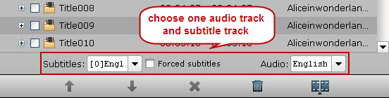audio subtitle track selection