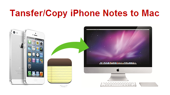transfer iPhone notes to mac