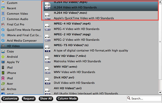 Choose output MP4 file format