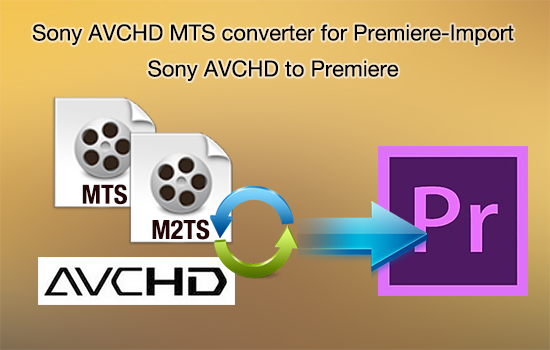 avchd-mts-for-premiere.jpg