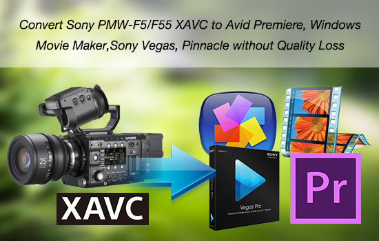 pmw-f5-f55-xavc-in-premiere-pro-vegas-movie-maker.jpg