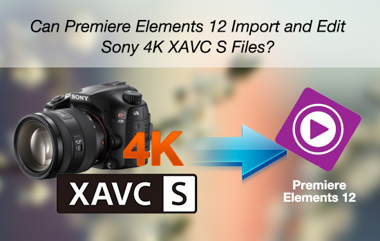 sony-xavc-s-4k-in-elements-12.jpg