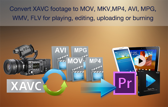 xavc-to-mkv-avi-mov-flv-wmv-mp4