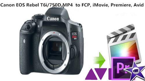 canon-t6i-to-fcp-avid-imovie-pro.jpg