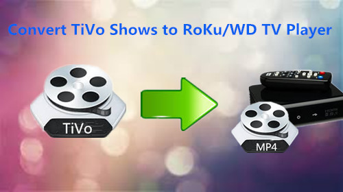 Copy/Put TiVo to NAS Device for Playing through Roku or WD