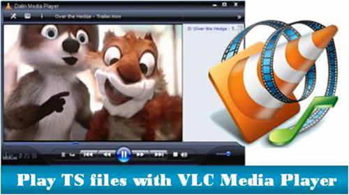 How to convert TS to MKV for playback with VLC Media Player?