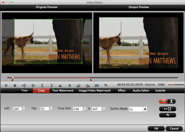 blu-ray ripper for mac editing interface