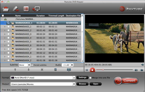 dvd ripper for mac importing interface