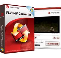 FLV/F4V Converter